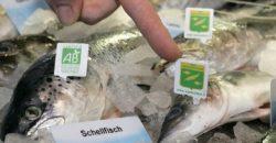 Achtung: Wieder verderblicher Fisch im Umlauf!